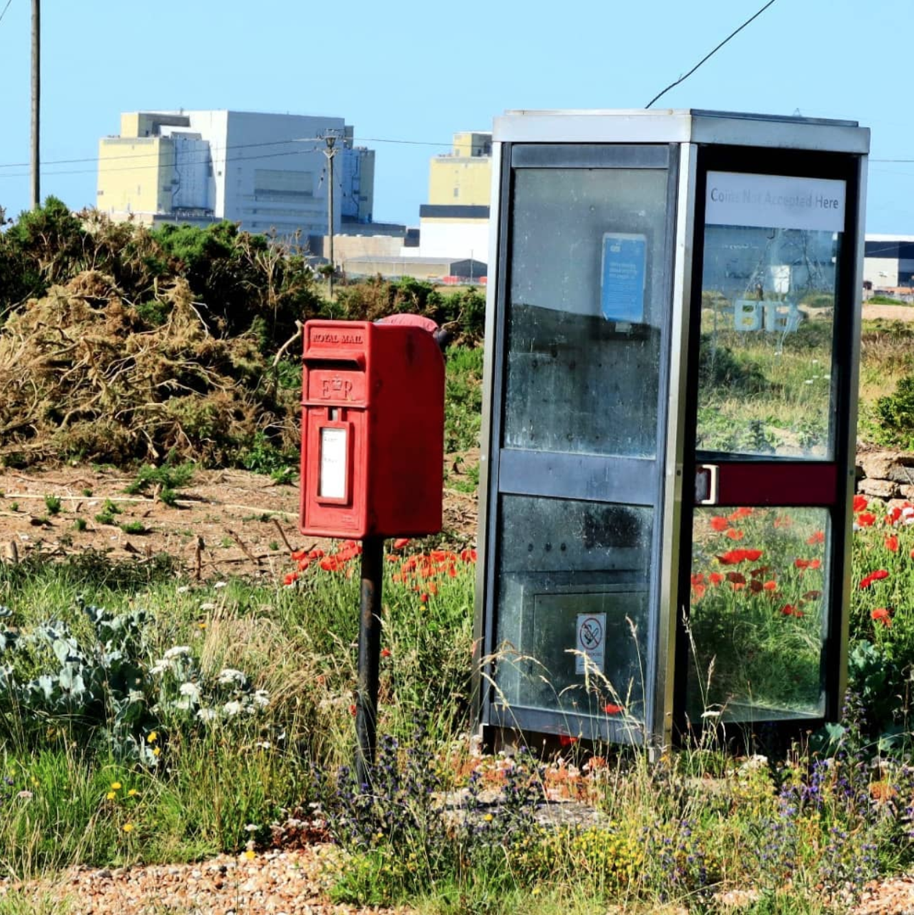 telephone booth and post box in a meadow of flowers