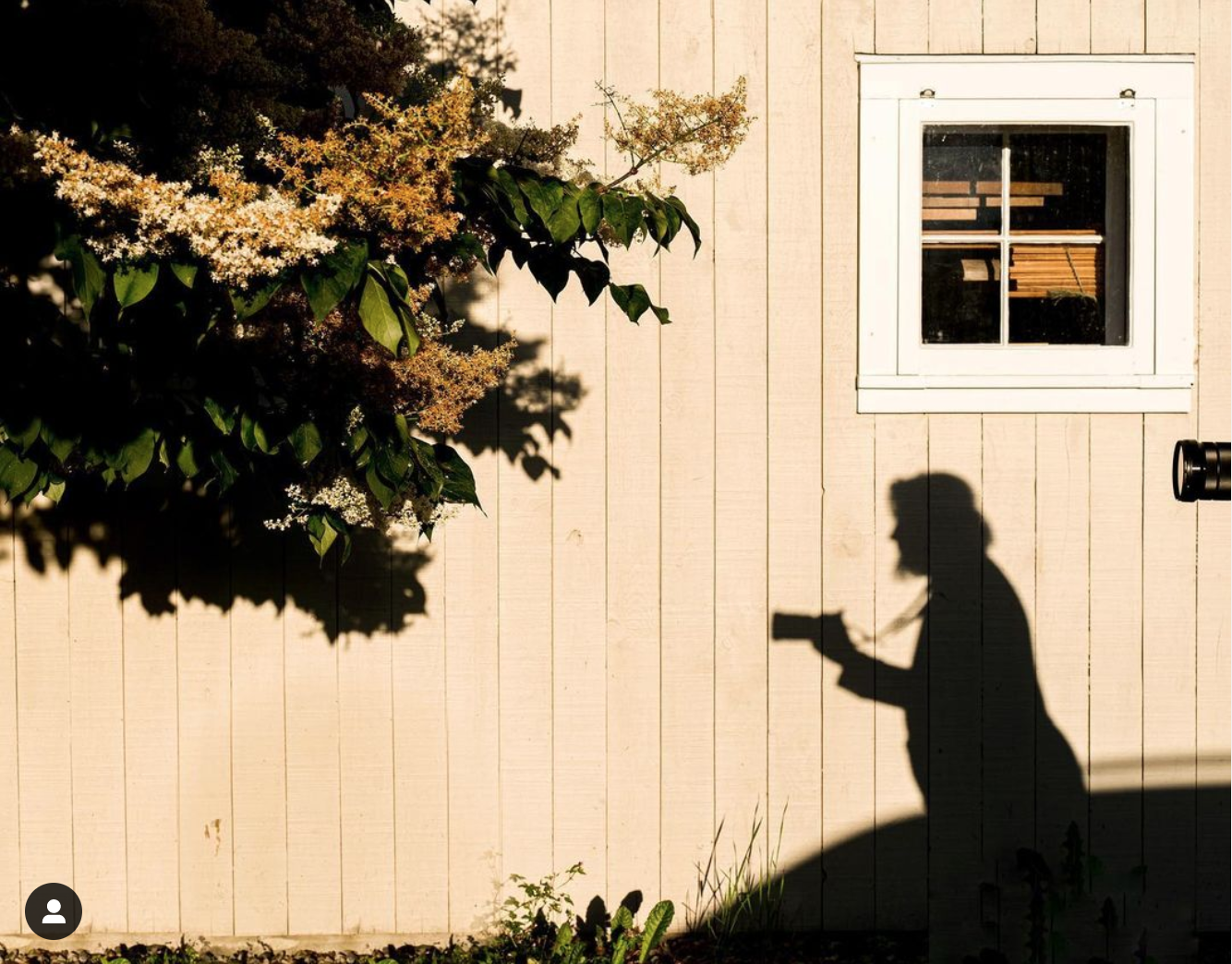 shadow of a woman taking a photograph